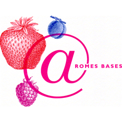 cropped-aromes-bases-logo-carre-1-1.png